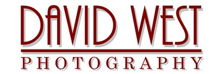 David West Photography - Wedding Photographer Essex